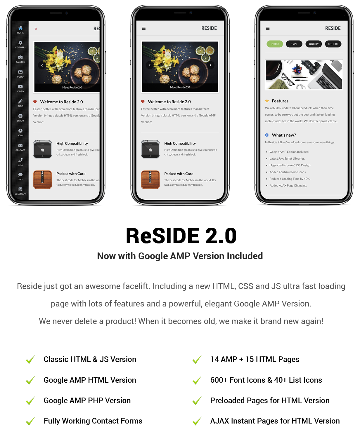 Reside Mobile and Google AMP Template - 8